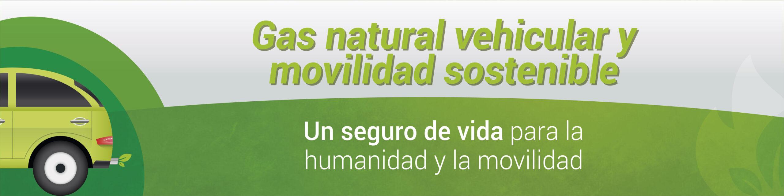 Gas natural vehicular y movilidad sostenible- Un seguro de vida