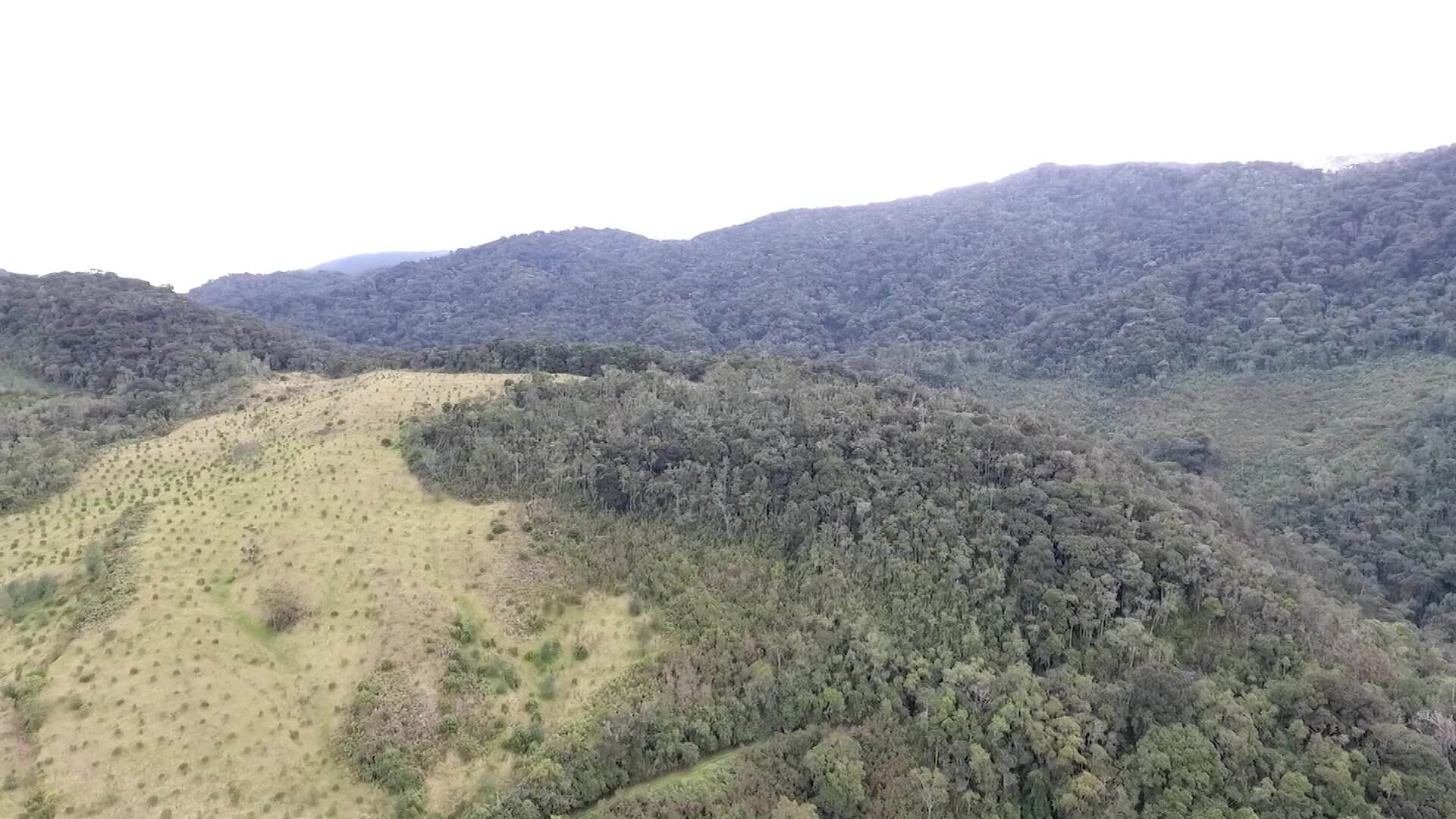 Acciones para la preservación de fuente hídricas