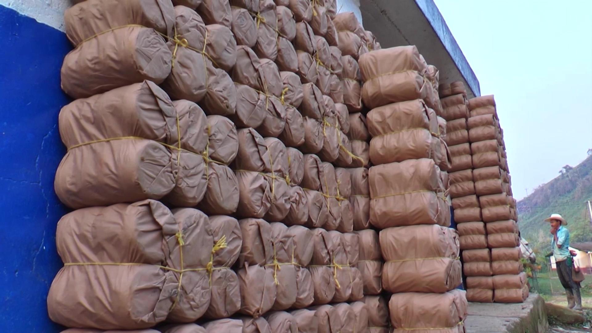 Paneleros de campamento exportarán su producto a EE. UU.