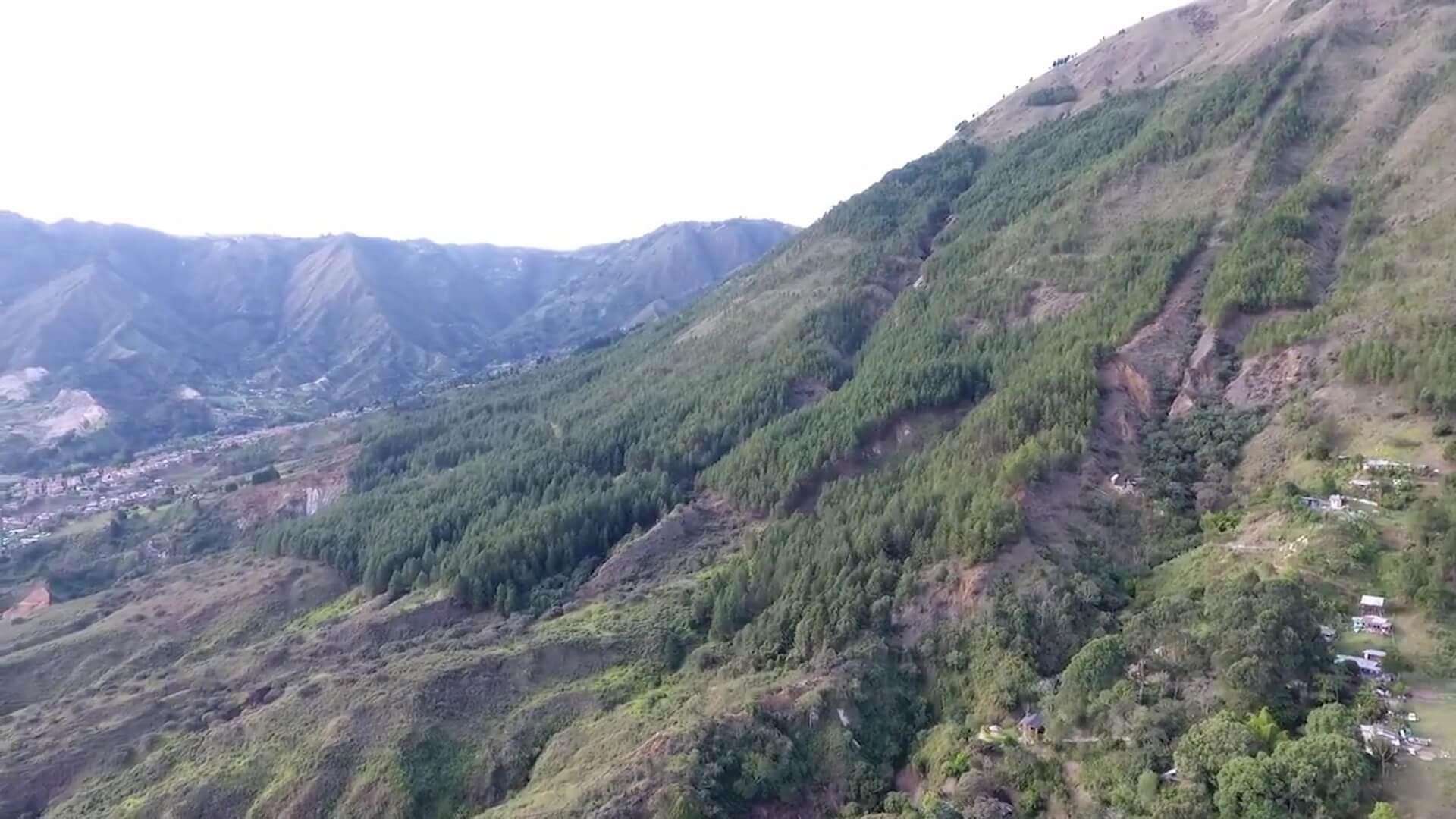 Construirán espacio verde en el Cerro Quitasol