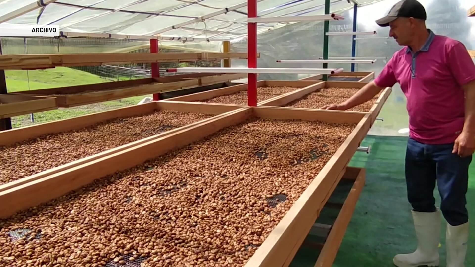 Hay escasez de fertilizantes para cultivos de café