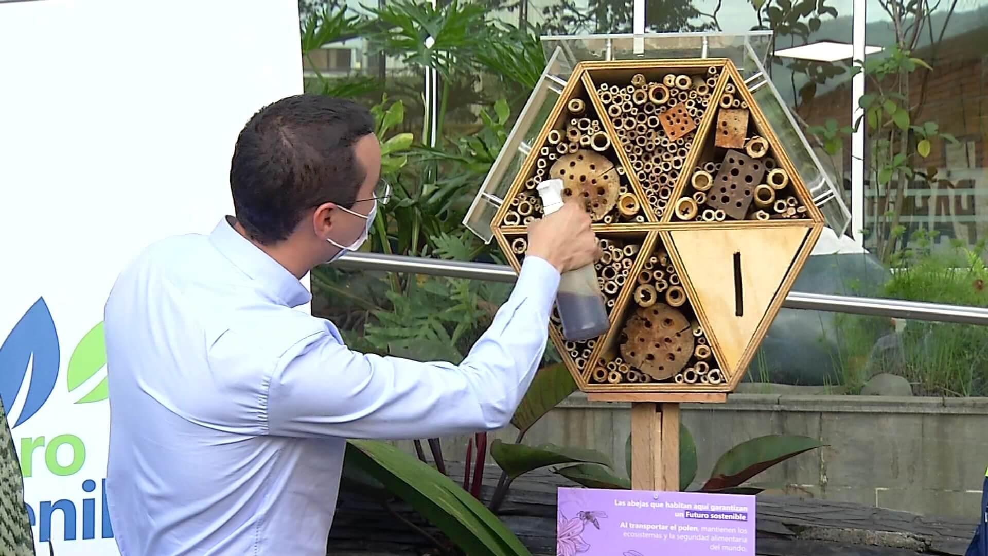 Refugio para abejas en el Valle de Aburrá