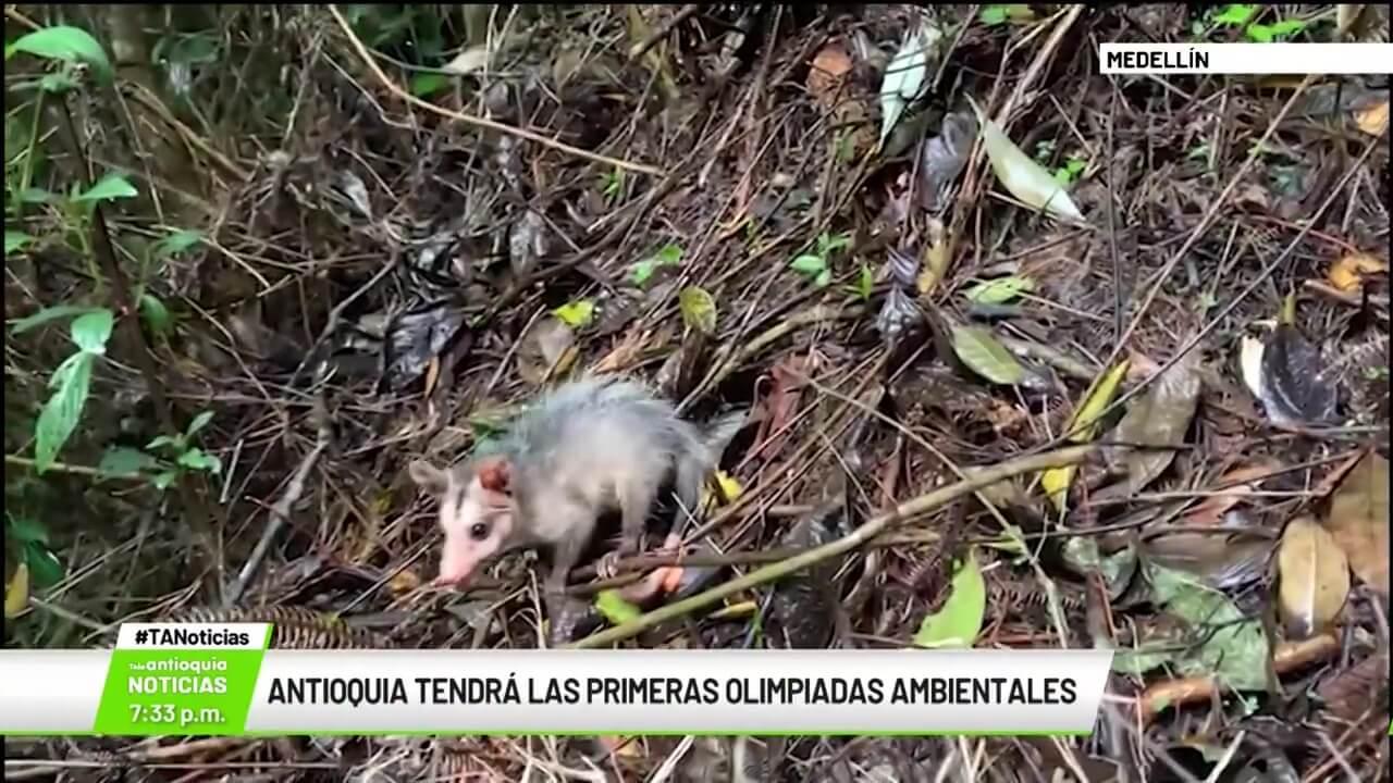 Antioquia tendrá las primeras Olimpiadas Ambientales